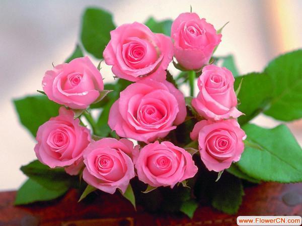 轻泥玫瑰花的步骤图片