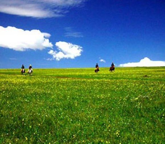 描写大草原的诗句-描写大草原的古诗诗句