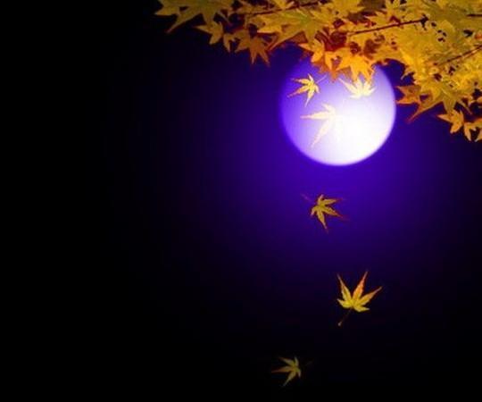 吃月饼 入夜,总是喜欢坐在窗前看月亮,看她日益丰满,看她渐渐憔悴,叹它圆缺盈亏,醉它变化万千。当入秋的钟声响起,望着渐渐变圆的月儿,我知道中秋节快到了。 老公的单位发月饼,看着那精装的礼盒,像小孩子似的一阵激动,忙不迭的掰开一个抢先品尝,只是一到嘴里就没有再吃的欲望了,唉!怎么会是这样,记得小时候那月饼怎么就那么好吃。 七十年代初期那还是个物质相对比较匮乏的年代,就是到了中秋节也不是家家都能吃得上月饼的,我们家除了要给祖母和外婆送去一些外,剩下的也就没几个了,常常的是我们兄妹每人一个,父亲母亲合一个。那时
