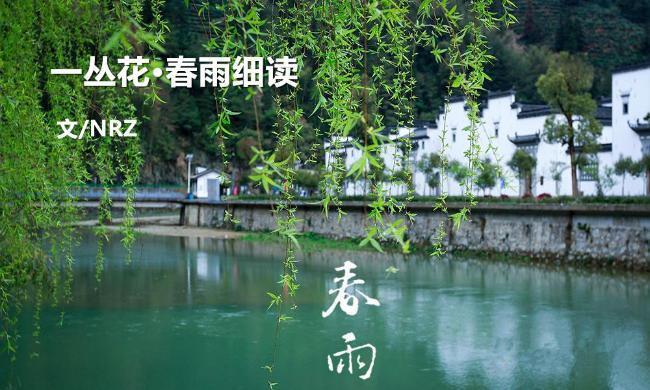 春雨风景图片大全集
