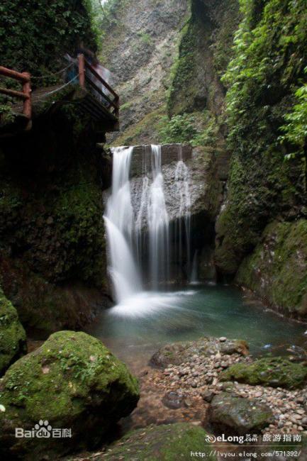 青城山后山风景都围绕着山间的溪水,一路飞瀑和水潭,风景好的路线都